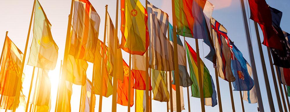 Expat Legal Services